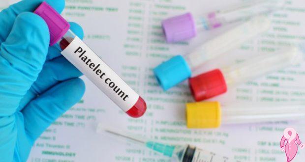 Hamilelikte Banal PLT Bedeli Kaçtır? Yüksek PLT Trombosit Hamileliğe Mani Midir?