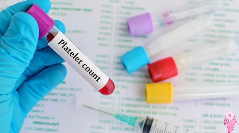 Hamilelikte Sıradan PLT Kıymeti Kaçtır? Yüksek PLT Trombosit Hamileliğe Mani Midir?