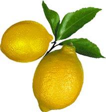 Limon Kanserden Gözetiyor